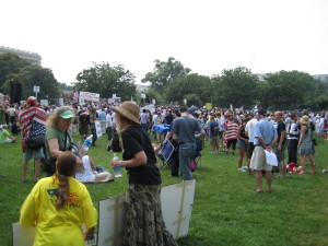 A view of the crowd (3)